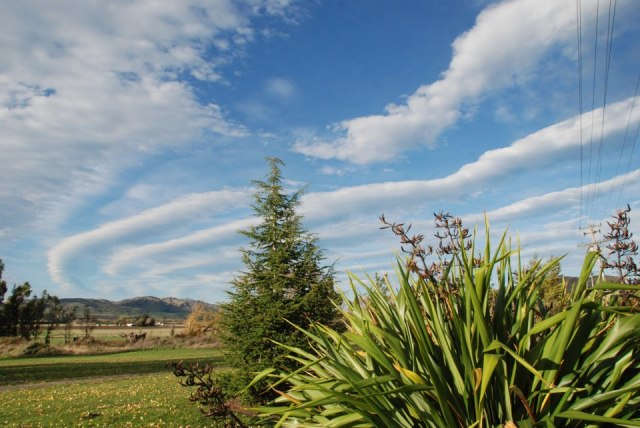 Photo by Marian Sutherland of Waikari, North Canterbury. April 28, 2013.
