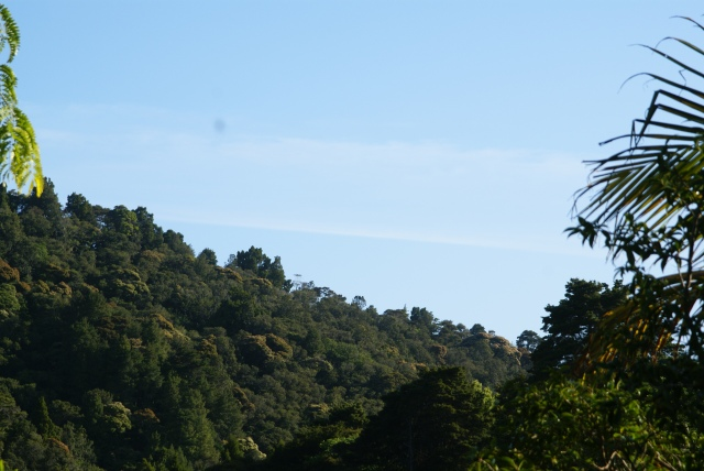 8.20am Taken from Whangarei, Woodhill looking towards the east.