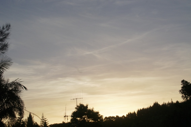 A sky thick with aerosol trails. Photo taken from Whangarei, looking west on New Year's day at about 8.26pm.