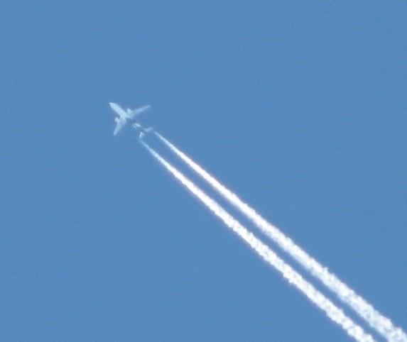 IMG_2126 Brad plane Air nz A320